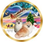 CHRISTMAS MAGIC<br>& 2 Pomeranians