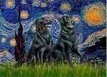 STARRY NIGHT<br>&Two Flat Coated Retrievers