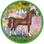 Brown Arabian Horse<br>In Garden Of Giverney