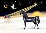"Black Arabian Horse in<br>""Christmas Dove"""