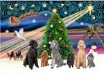 CHRISTMAS MAGIC<br>Six Poodles