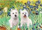 IRISES & Two Westies<br>HOLIDAY CARD