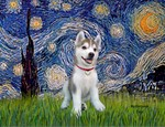 STARRY NIGHT<br>& Siberian Husky Pup