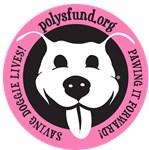 Paw It Forward - pink