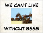 We Can't Live Without Bees