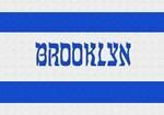 Israeli Brooklyn Flag