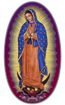 8 Lady of Guadalupe