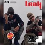Leak Magazine