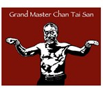 The Grandmaster Series