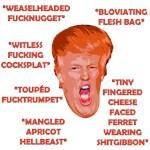Trump Insults