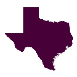 Purple Texas Outline