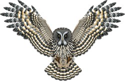 Beadwork Great Grey Owl