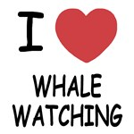 I heart whale watching