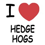 I heart hedgehogs