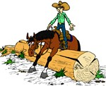 Trail Horse & Log
