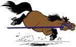 Horse Gym Bags
