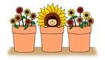 flower pot baby sunflowers apparel
