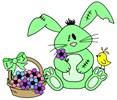 zombie bunny apparel & more