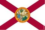 Florida Themed Designs
