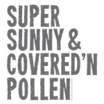 Super Sunny & Covered In Pollen