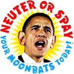 Neuter or Spay