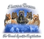 I Have a Dream, No BSL