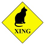 Cat Crossing