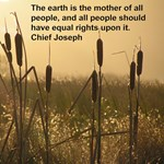 Chief Joseph Earth Quote