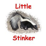 Little Stinker (Baby Skunk)