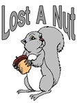 Lost A Nut