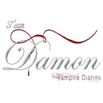Team Damon The Vampire Diaries Raven Ribbon