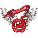 Team Stefan