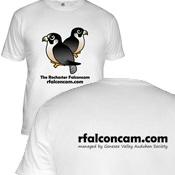 Rochester Falconcam + URL