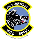 390th Fighter Squadron (Vietnam & Present)