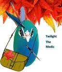 Twilight The Medic