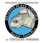 Marine Turtle Program