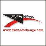 Flying Wings Kites