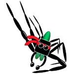 ninja spider