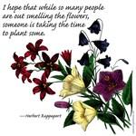Plant Flowers! - Items & Apparel