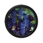 gifts! napa valley wine country wall clocks