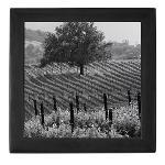 Napa Valley Wine Country Keepsake Box Gifts