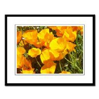 Wine Country California Poppy Gifts