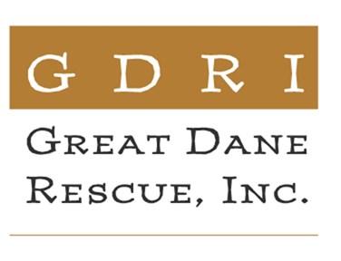 GDRI Color Logo Merchandise