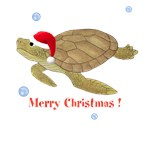 Personalized Christmas Sea Turtle