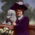 1903 Edwardian era Lady & Havenese