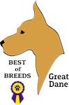 Fawn Great Dane