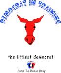 Democrat In Training