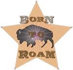 Bison Star