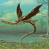 Flying Wood Dragon