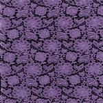 Purple  Lace on Black Pattern